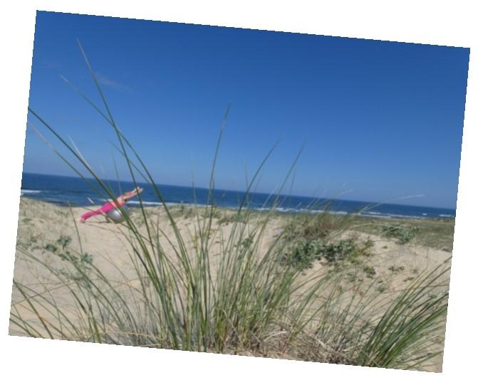 plage de Messanges dans les Landes