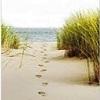 pas dans le sable Messanges